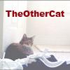 theothercat userpic