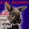 evilbunnyby_deannie