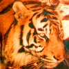 tigervision userpic