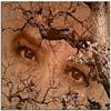 irishstork userpic