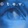 tintaenvena userpic