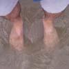 enalut userpic