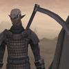 FFXI Character (Vaius)