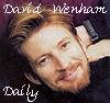 daisy_daily