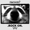 racoon \m/