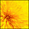 darkstarryeyes userpic