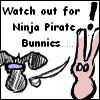 Ninja Pirate Bunnies
