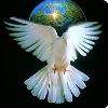 shankar7 userpic