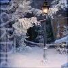 Minnow: Narnia2