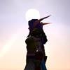 dragon_huntress