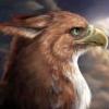 vain_bird userpic