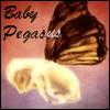 pegasus_bp userpic
