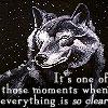 Wolf Clarity