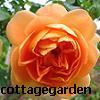 cottagegarden userpic