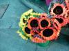 sf sunflowers