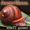 angry!snail