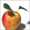 Mrs. Christie: apple