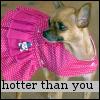 littlexqt userpic