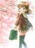 cherry_blossom3 userpic