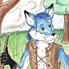 bluefoxxie userpic