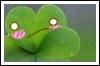 chollha userpic