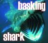 darcydodo: basking shark