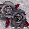 blackest_rose_ userpic
