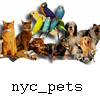 The Loving Human Companions of NYC Pets