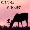 Iphiginia Saberhagen: Silhouette Moose from MMWD