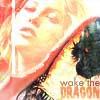 [ASOIAF] Drogon