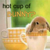 Jase: Cup of Bunny