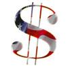 dollar flag