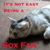 Not Easy Being a Sox Fan