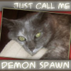 Zelda - demon spawn