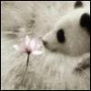 melancholiceyes userpic