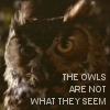 TP - Owls