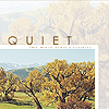 Banner- quiet yellow