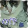 OTP, Al n Camelot