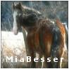 miabesser