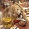 olli_bunny userpic