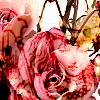 dollmilk userpic