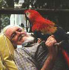 EJ and parrot