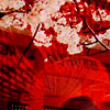 hikage_chan userpic
