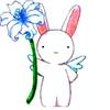 taradesuyo userpic