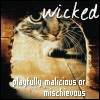 Wicked - Credit to enriana