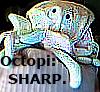 babelpoetry userpic
