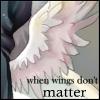 fallen_falcon userpic