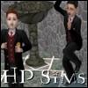 Harry Potter Sims Community