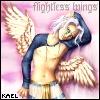 flightless wings