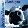 Polter-Cow: Thank you!